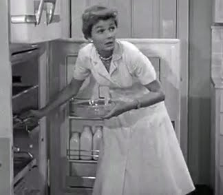 June Cleaver was my hero ♥